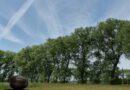 De Grote Wateringe (Damme, België)