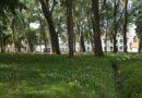 """Prinselijk begijnhof """"Ten Wijngaerde"""" (Brugge, België)"""