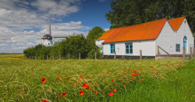 Sint-Karelsmolen (De Moeren, Veurne)
